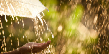 Værdien af et Hydrologisk Informations- og Prognosesystem